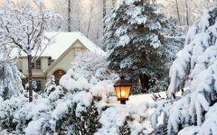 Парад снеговиков, квест на огороде и музей ледяных фигур: как не заскучать зимой на даче?