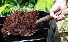 Польза садового компоста, способы применения универсального удобрения на дачном участке
