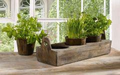 Зелень и овощи круглый год, не выходя из дома!