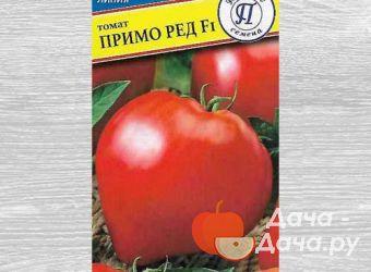 Томат сорт Примо Ред, фото 1
