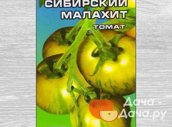 Томат сорт Сибирский Малахит, фото 1