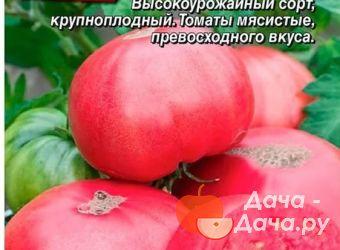 Томат розовый десертный характеристика и описание сорта
